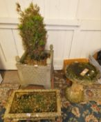 A concrete bird bath (bath needing attention), with a square planter on raised supports with