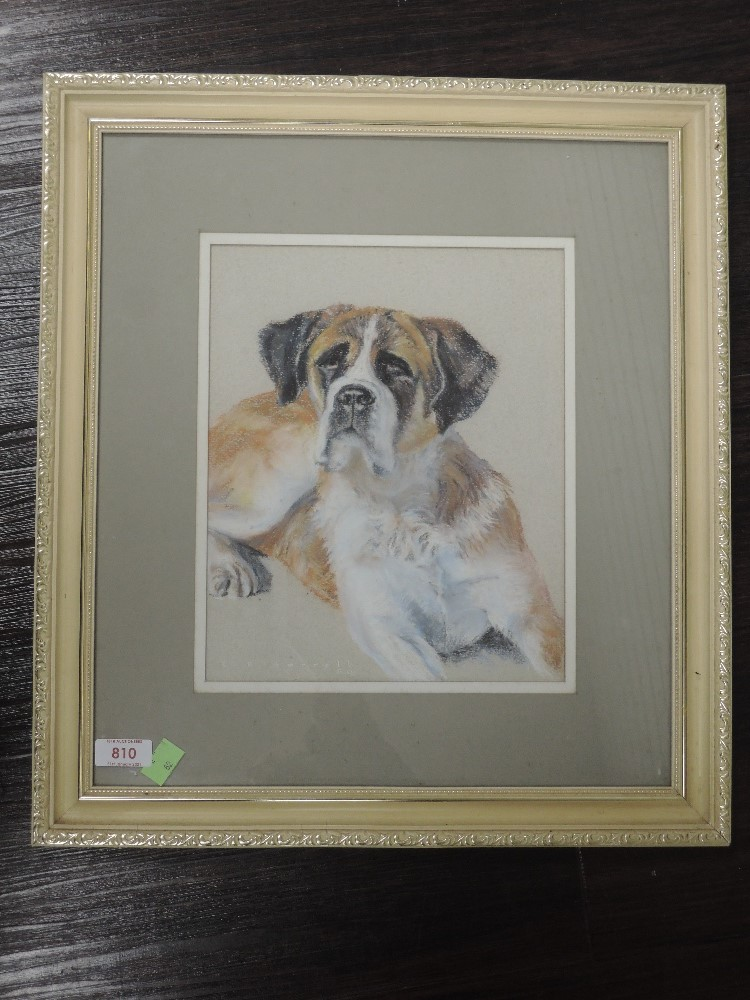 A pastel sketch, E H Borrell, St Bernard dog, signed and dated (19)80, 28 x 22cm, framed and glazed