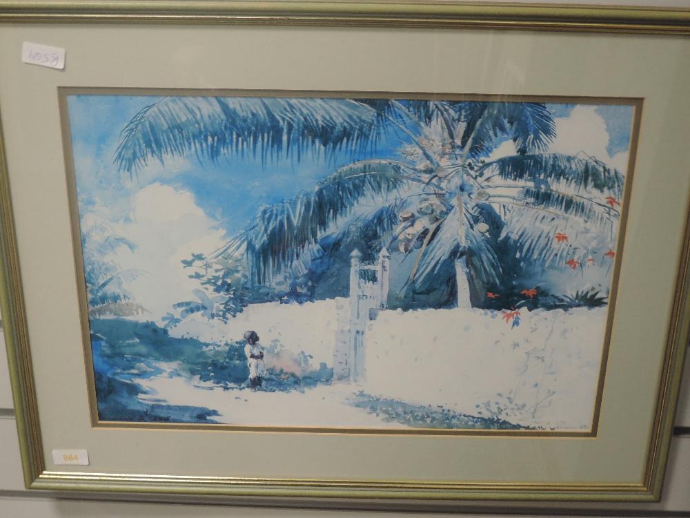 A print, after Homer, tropical garden, 33 x 48cm, framed and glazed
