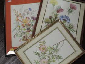 Three watercolours, Denise, still life, signed, inc 26 x 36cm, framed and glazed