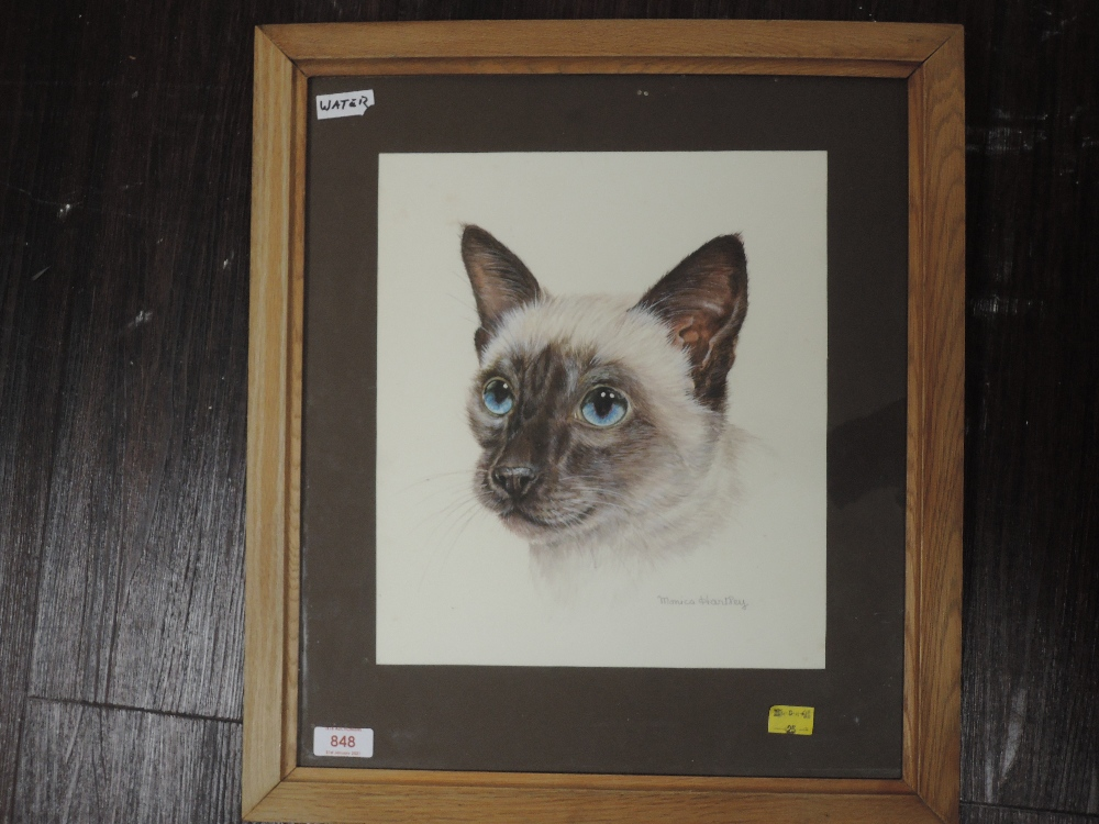 A watercolour. Monica Hartley, Siamese cat, signed, 30 x 27cm, framed and glazed
