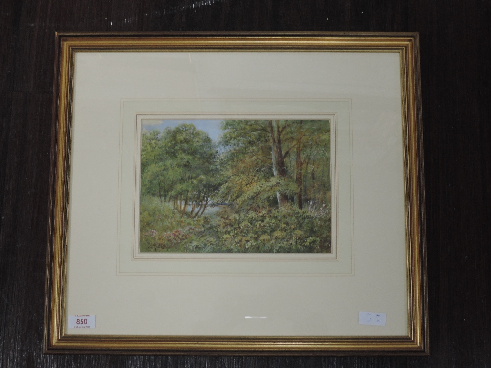 A watercolour, A Jump, still life, signed, 49 x 39cm, framed and glazed