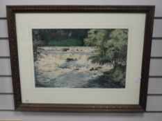 A watercolour, James Ingham Riley, Aysgarth falls, signed, 30 x 47cm, framed and glazed