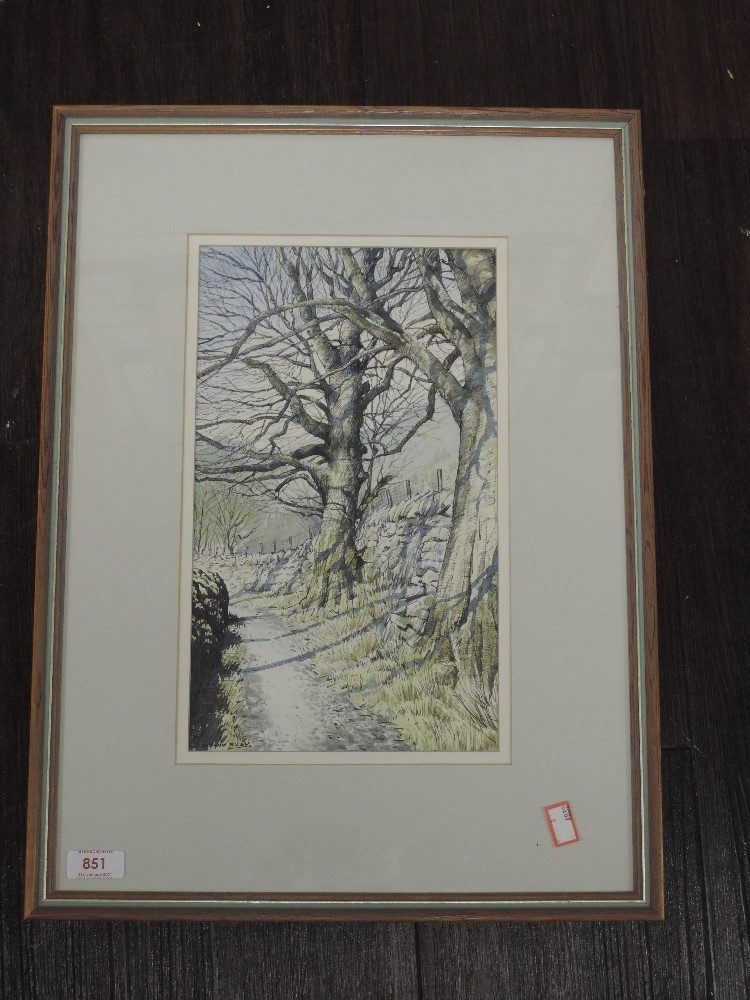 A watercolour, Janes Ingham Riley, woodland path, signed, 33 x 20cm, framed and glazed