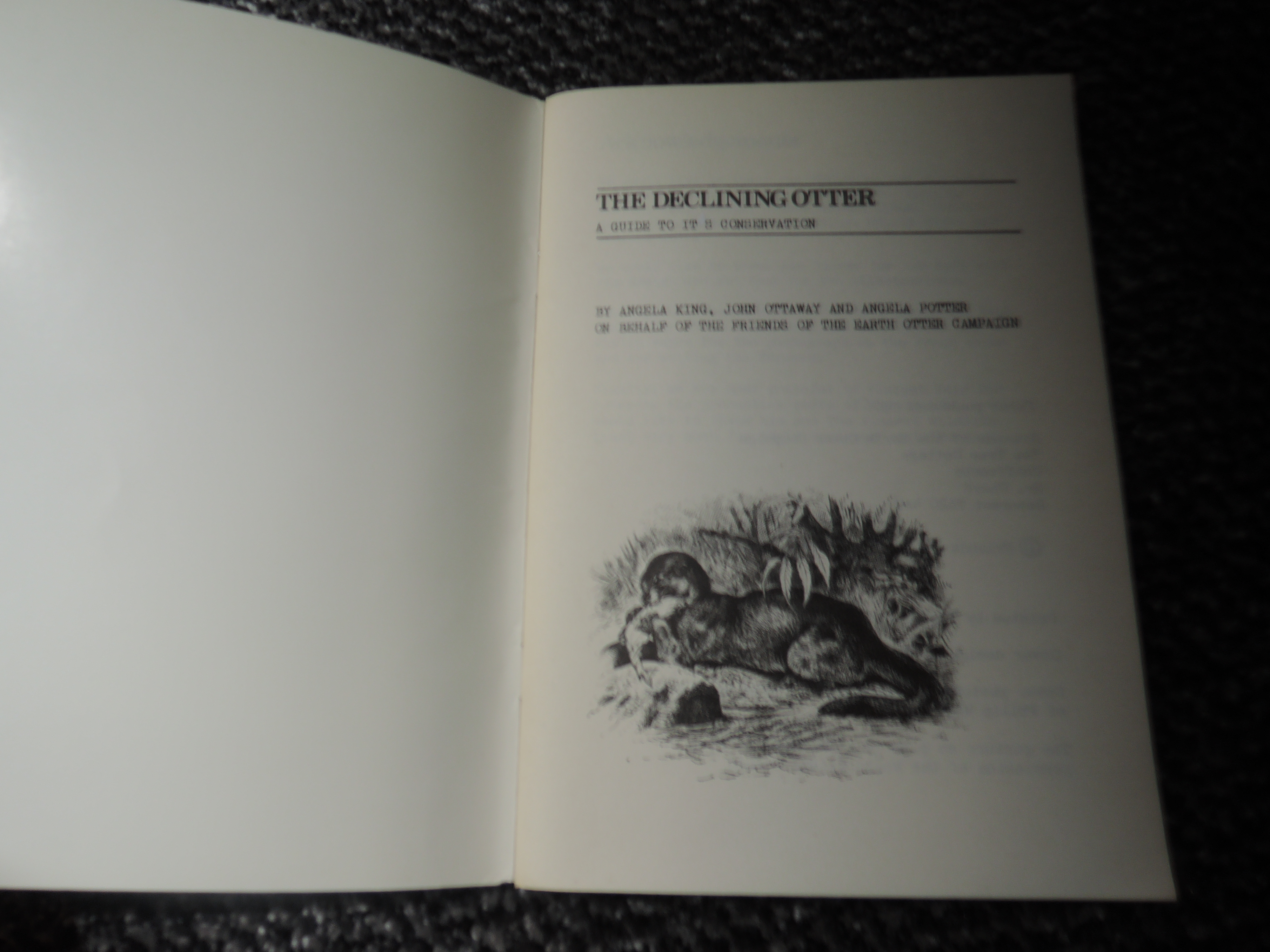 Otter Hunting and related. A large selection, condition mixed. Includes specific Hunt records, - Image 8 of 8