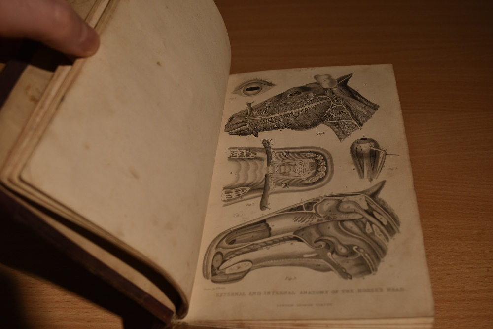 Natural History/Veterinary Science. Brown, Thomas - A Manual of Modern Farriery; &c. London: - Image 4 of 4