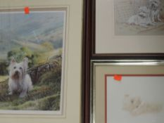 A Ltd Ed print, after Steven Townsend, Highland terrier, signed and numbered 239/450, 39 x 29cm,