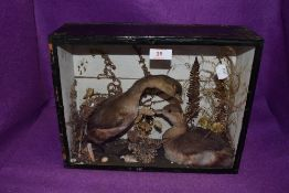 A cased taxidermy display of running ducks or similar.