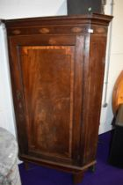 A 19th Century mahogany corner cabinet, having green painted shelves to the interior, with
