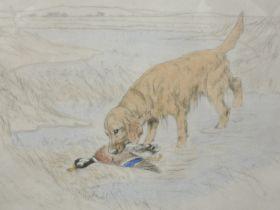 A Ltd Ed etching, after Vernon Stokes, retriever, num 57/75, 27 x 30cm, plus frame and glazed