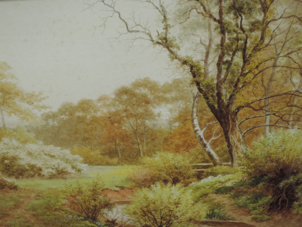A pair of watercolours, Sidney P Winder, river landscapes, signed and dated 1917, each 29 x 45cm, - Image 3 of 4