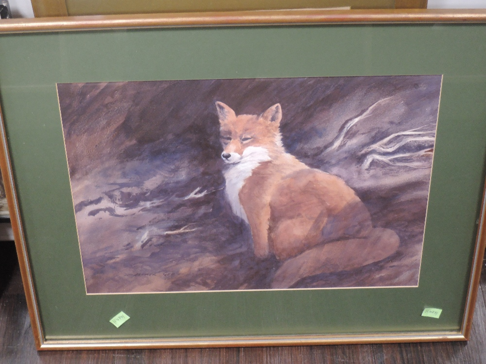 A watercolour, red fox, indistinctly attributed verso, 32 x 46cm, plus frame and glazed - Image 2 of 3
