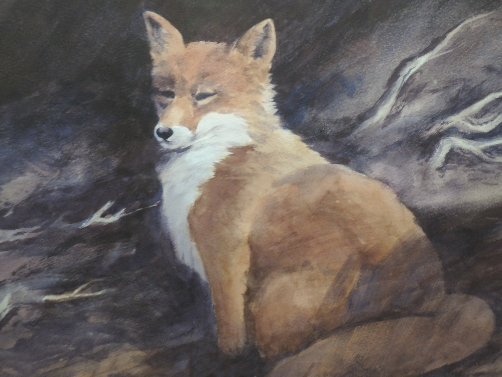 A watercolour, red fox, indistinctly attributed verso, 32 x 46cm, plus frame and glazed
