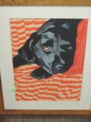 A print, after Dianne Bird Williams, Black Labrador, signed, 40 x 29cm, plus frame and glazed