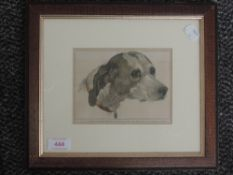 A print, Head of pointer, 11 x 15cm, plus frame and glazed
