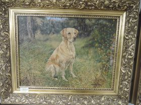 Two oil paintings, Susan M Triggs, labrador dogs, signed and dated 1979 and 1986, each 29 x 39cm,