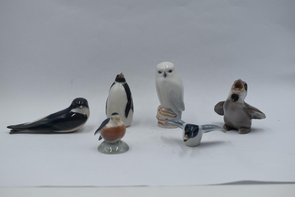 Six Royal Copenhagen studies, Flying Duck 24, Baby Robin 2238, Swallow 2374, Owl 1741, Baby