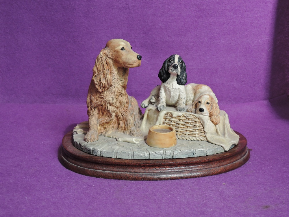 A Border Fine Arts study, Cocker Spaniel and Two Pups B0312B, Golden Spaniel with black & white