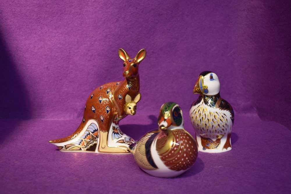 Three Royal Crown Derby Paperweights, The Australian Collection Kangaroo, Puffin and Carolina
