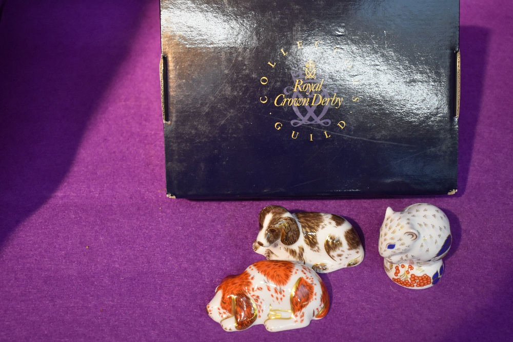 Three Royal Crown Derby Paperweights,Collector's Guild Derby Doormouse, Puppy and Scruff, all with
