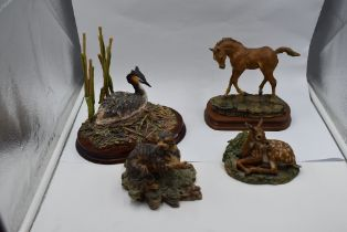 Four Border Fine Arts studies, Grebe and Chicks B0973, Scottish Wildcat 005, Fawn, style one 016 and