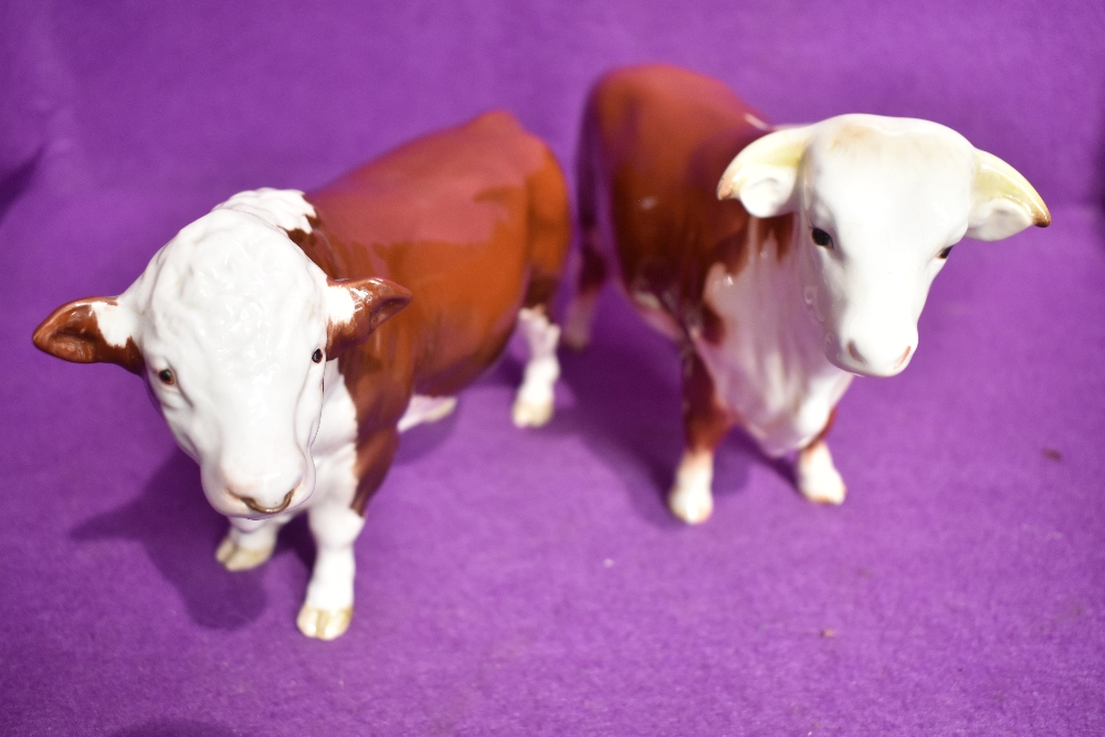 Two Beswick Hereford bull figure studies Bull 949 and Polled Bull 2549A