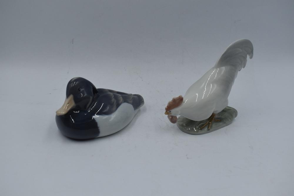 Two Royal Copenhagen studies, Cockerel 1127 and Tufted Duck 118