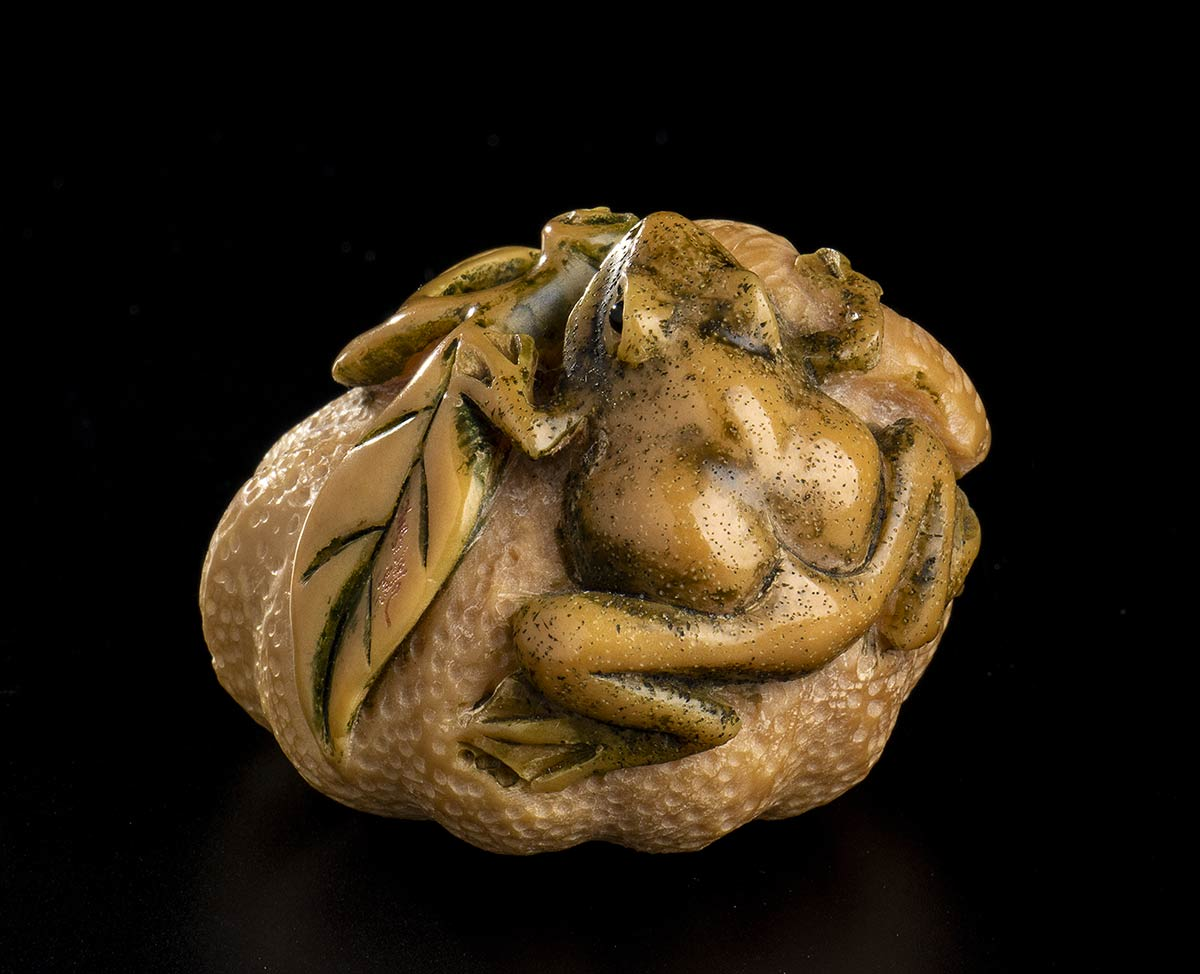 AN IVORY NETSUKE WITH FRUIT AND FROGSJapan, 20th century - Image 3 of 4