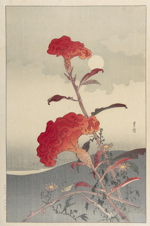YOSHIMOTO GESSO 吉本月荘(1881-1936) Flowers and grasshopper Oban tata-e / woodblock print A print - Image 4 of 6