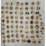 Approx. seventy British and foreign military cap badges and other insignia, some copies: to