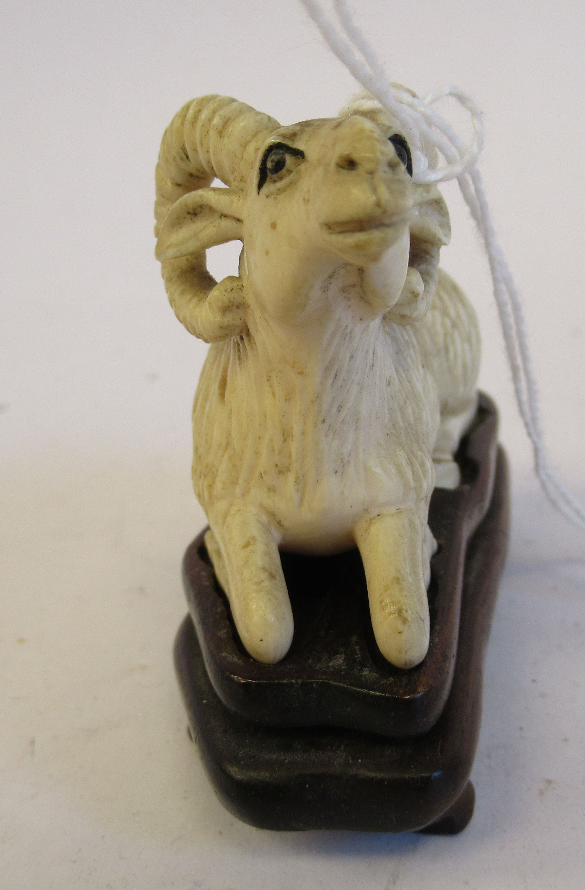 """A 19thC carved ivory model, a seated ram 1.5""""h on a hardwood stand - Image 2 of 6"""