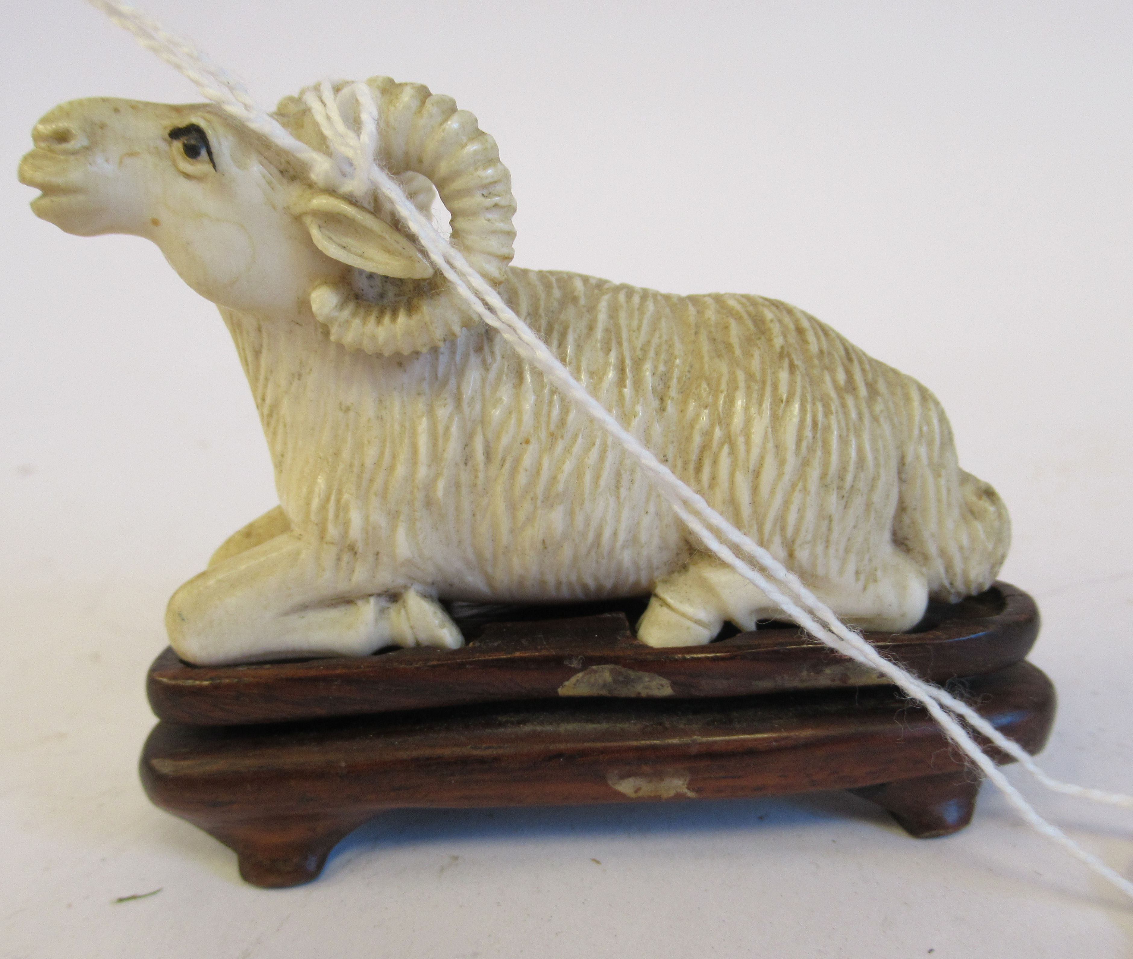"""A 19thC carved ivory model, a seated ram 1.5""""h on a hardwood stand"""