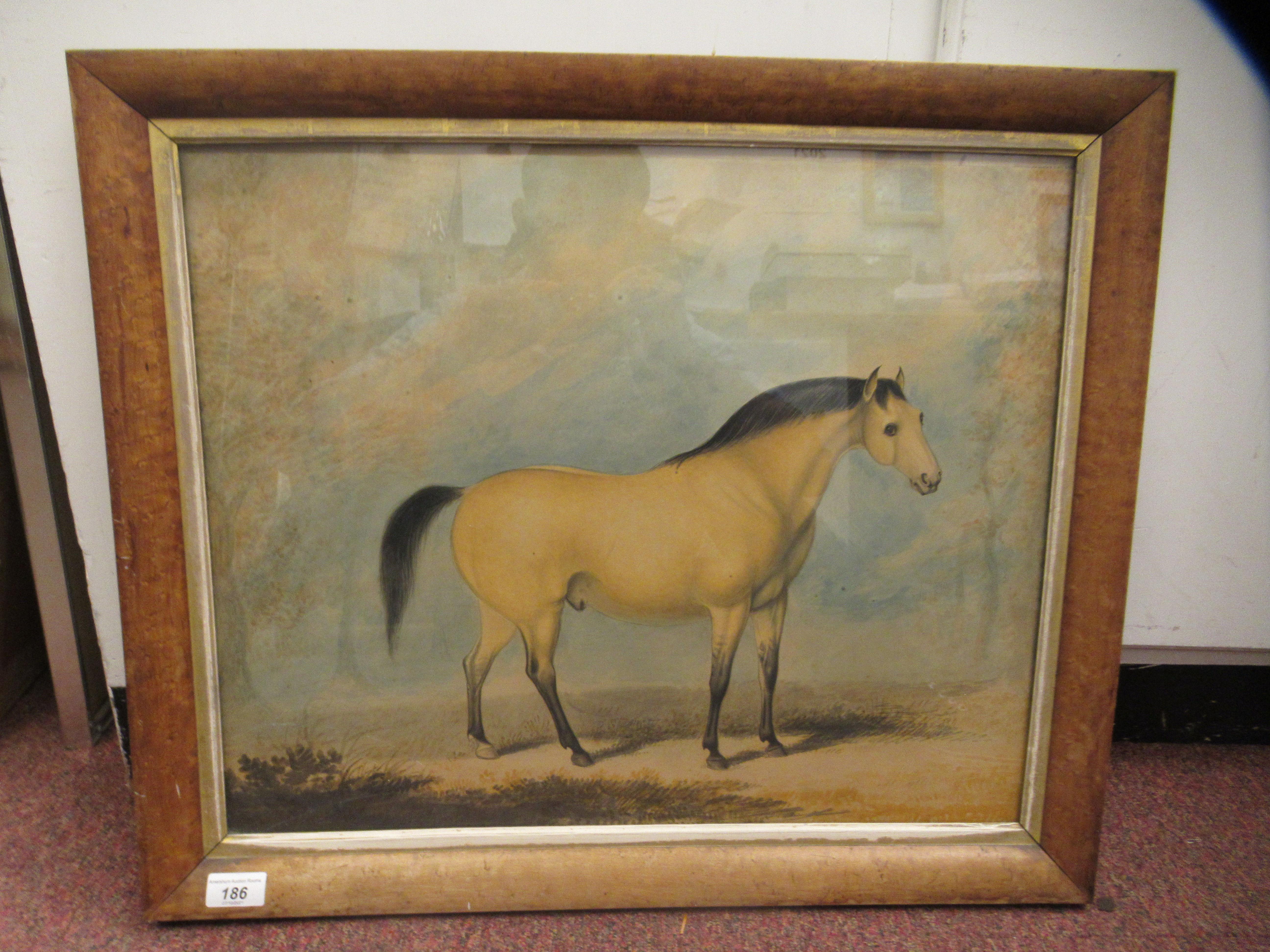 R Stennett - an equestrian study, a standing racehorsewatercolourbears a signature 17.5'' x