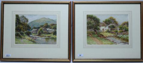 Harry James Sticks - watercolours.