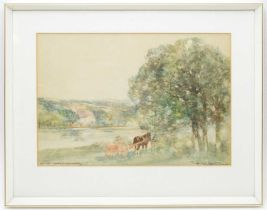 Victor Nobel Rainbird - Watercolour