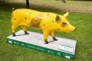 Bumble Pig - Allison Allan