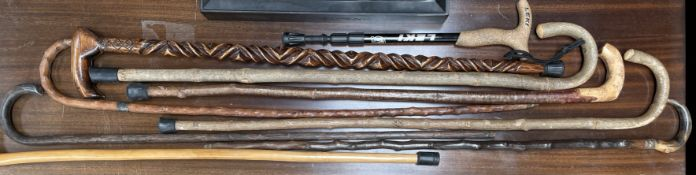 A silver tipped walking stick together with a horn handled walking stick and a collection of