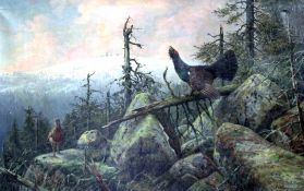 Carl ZIMMERMANN (1863 - 1930). Capercaillie and partridge in front of the Schneekoppe.