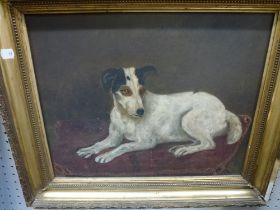 A late 19th/early 20th century English Provincial school oils on canvas of a Jack Russell terrier,