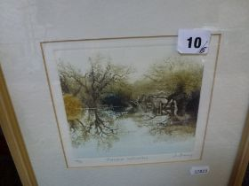 Jo Bamy, limited edition print (44/150), 'Flooded reflections', numbered, titled and signed in
