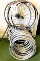 A group of miscellaneous loose/unfitted wheel rims, including Fulcrum Racing 5 Evolution, and