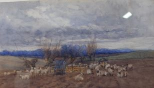 Attributed to Claude Hayes (British, 1852-1922), Sheep in a landscape, watercolour, 20 x 35cm,