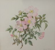 Honor Irvine (British, 20th Century), Wild Roses, signed 'Honor Irvine' (lower right), watercolour,