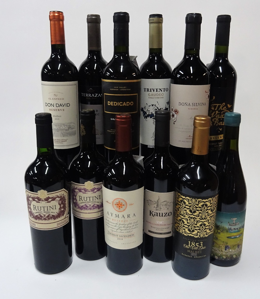 12 BOTTLES ARGENTINIAN RED WINE - Image 2 of 2