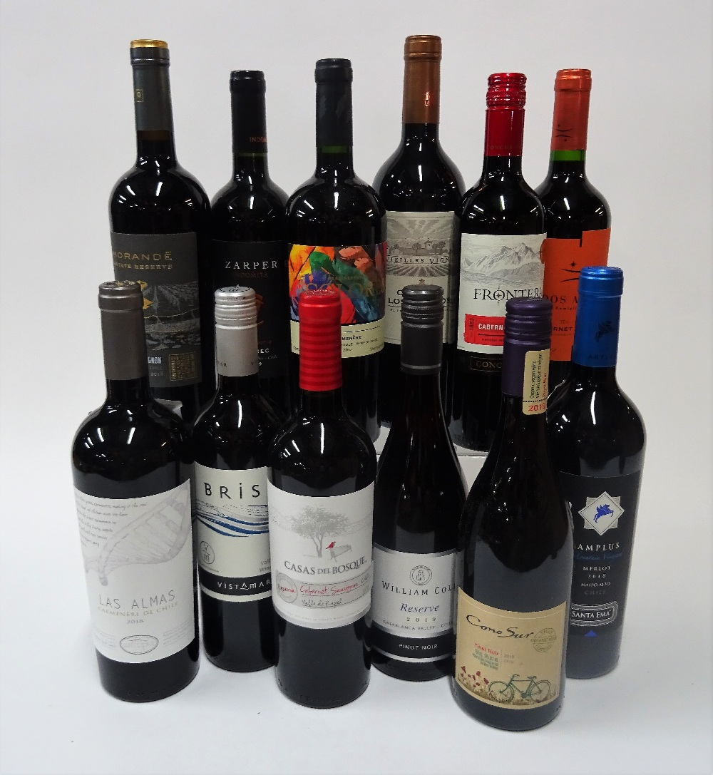 12 BOTTLES CHILEAN RED WINE - Image 2 of 2