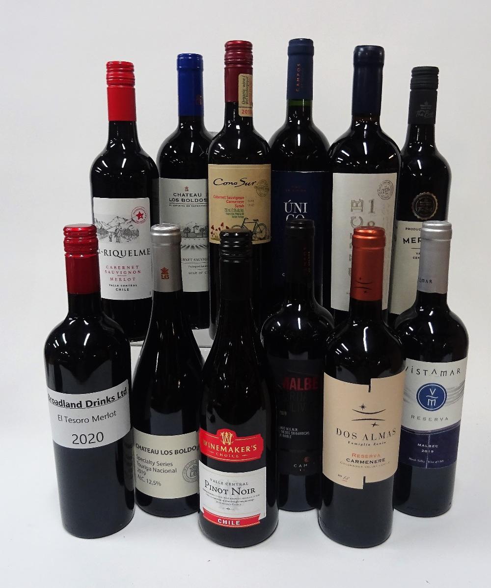 12 BOTTLES CHILEAN RED WINE