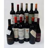 12 BOTTLES ARGENTINIAN RED WINE