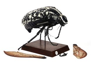 A POLYCHROME DECORATED DIDACTIC MODEL OF A BEETLE