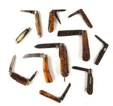 ELEVEN BONE-HANDLED POCKET KNIVES (11)