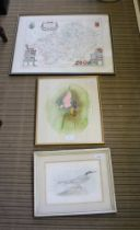 A REPRODUCTION COLOURED MAP OF WARWICKSHIRE, together with a watercolour study of a humming bird and